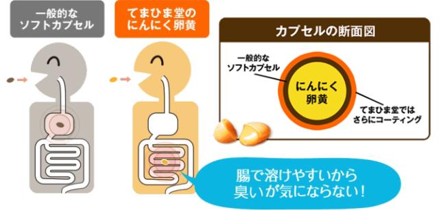 てまひま堂にんにく卵黄の腸溶性カプセル