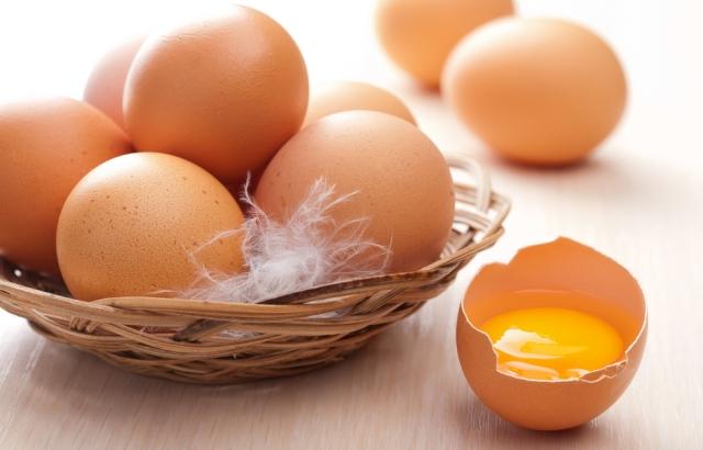 卵黄は放し飼い鶏の有精卵
