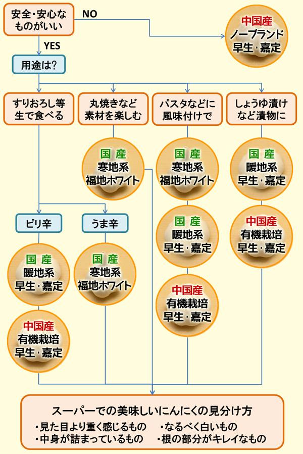 にんにくの選び方チャート